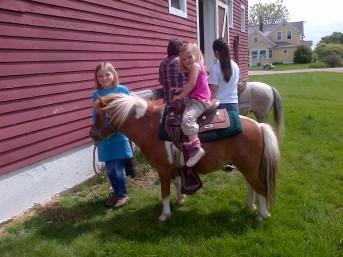 The grandkids like to help train ponies.