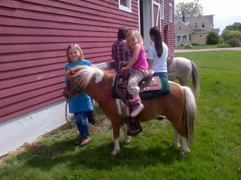 The grandkids like to help train ponies.