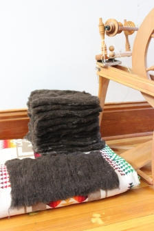 Carded batts - we have a motorized carder that makes this part pretty easy.