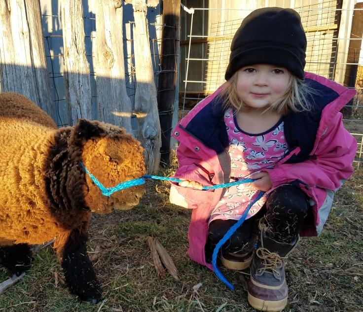 rachel and lamb